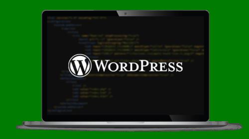Schnelles WordPress Hosting